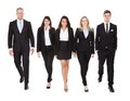 Portrait of welldressed businesspeople walking full length against white background Royalty Free Stock Photos