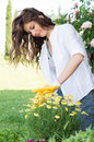 Portrait of woman pruning flower happy outdoor in the garden Stock Photos