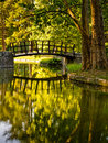 Portrait of a wooden bridge in a park Stock Photography