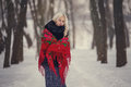 Portrait of a young caucasian woman in russian style on a strong frost in a winter snowy day. Russian model girl. Royalty Free Stock Photo