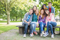 Portrait of young college students in park group the Stock Image