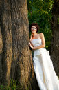 Portrait of the young girl pretty in a wedding dress Stock Photos