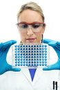 Portrait of young scientist looking a microplate Royalty Free Stock Photos