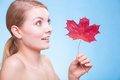 Portrait young woman girl with red maple leaf skincare habits of as symbol of capillary skin on blue face of taking care of her Royalty Free Stock Image