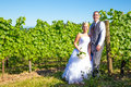 Portraits of bride and groom a outdoors in a vineyard at a winery in oregon right after their ceremony vows Royalty Free Stock Photography