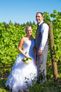 Portraits of bride and groom a outdoors in a vineyard at a winery in oregon right after their ceremony vows Royalty Free Stock Images