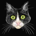 Portret czarny i biały kot z dużą zielenią e Obrazy Stock