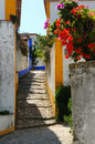 Portuguese alley and flowers Royalty Free Stock Photo