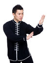 Pose of defense in chinese kung fu Royalty Free Stock Photo