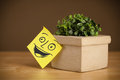 Post-it note with smiley face sticked on a flowerpot