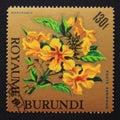 Postage stamp Burundi, 1966. Markhamia lutea flower Royalty Free Stock Photo