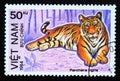 Postage stamp Vietnam, 1984, Tiger, Panthera tigris Royalty Free Stock Photo
