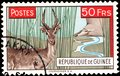 Postage stamp issued in Guinea with the image of the Impala antelope Defassa Waterbuck - one of the symbols of Africa Royalty Free Stock Photo