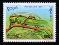 Postage stamp Laos, 1995. Great Green Bush Cricket Tettigonia viridissima insect Royalty Free Stock Photo