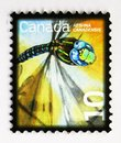 Postage stamp printed in Canada shows Canada Darner (Aeshna canadiensis), Beneficial Insect Definitives 2007-2014 serie, circa
