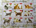 Postage Stamps - Gatos Domesticos