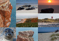 Postcard collage with spots on helgoland north germany Royalty Free Stock Photos