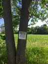 Posted private property a sign is hanging on a tree trunk warning that hunting fishing trapping and trespassing for any purpose is Stock Images