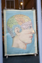 Poster with brain of man in the window shop. `A picture of good health`