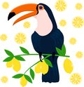 Toucan on citrus background - vector illustration, eps