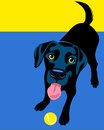 Poster layout with black labrador retriever drawing of dog playing fetch Royalty Free Stock Photos
