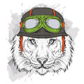 The poster with the portrait of the tiger wearing the motorcycle helmet. Vector illustration. Royalty Free Stock Photo