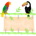 Poster stem bamboo tropical birds Royalty Free Stock Photo