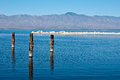 Posts in water at Salton Sea Stock Photos