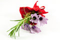 Posy of purple daisies with sprig of greenery wrapped with red ribbon white background Royalty Free Stock Photo