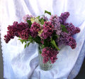 Posy of purple lilac s in the crystal vase Royalty Free Stock Photography