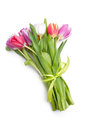 Posy of spring tulips flowers Royalty Free Stock Photos