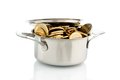 Pot with euro coins a cooking is well filled symbolic photo for funding Royalty Free Stock Photography