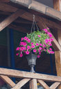 Pot with flowers on a wooden terrace Royalty Free Stock Photo