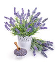 Pot Of Lavender And Bowl With ...