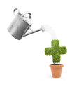 A pot plant shaped like a cross and watering can Stock Image