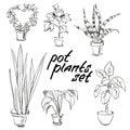 Pot plants set. Hand-drawn design elements