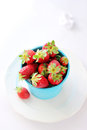 Pot with strawberries Stock Images