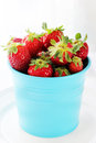 Pot with strawberries Stock Photos