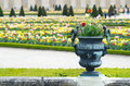 Pot in Versailles Palace garden, Paris Royalty Free Stock Photo