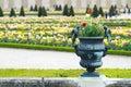 Pot in Versailles Palace garden, Paris Royalty Free Stock Photo