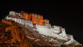 Potala palace in tibet at night Stock Images