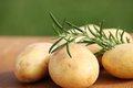 Potaoes close up of fresh rosemary and raw potatoes Royalty Free Stock Images