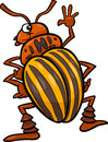 Potato beetle insect cartoon illustration of funny colorado character Stock Photography