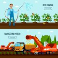 Potato Cultivation Flat Compositions Royalty Free Stock Photo