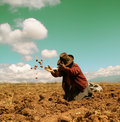 Potato Harvest in the Andes Stock Photos