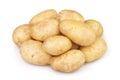 Potato new on white background Stock Image
