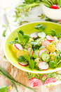 Potato salad with radishes Stock Photos