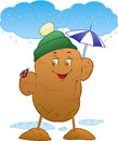 Potato vector illustration of happy outdoors on the rain Royalty Free Stock Photos