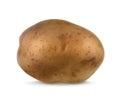 Potato vector illustration Royalty Free Stock Photo