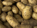 Potatoe Royalty Free Stock Photos